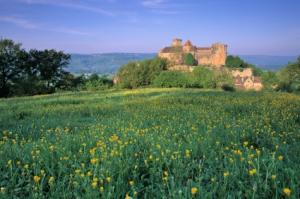 Chateau de Castelaud