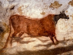 Dordogne is home to dozens of caves deorated with prehistoric art.
